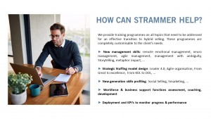 How Can Strammer Help?